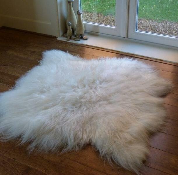 Icelandic Sheepskin Rug 2 Skin Ivory