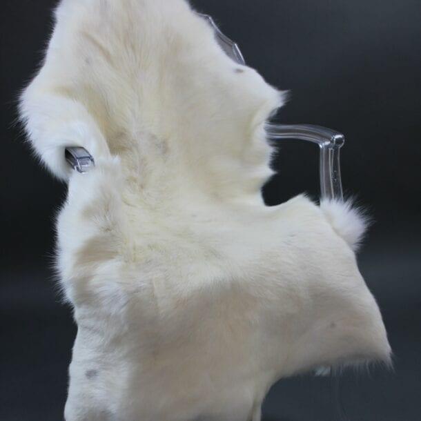 White Reindeer Hide Rug WR204